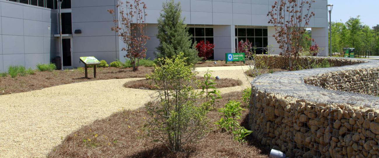 Native plants and compacted pea gravel are used to lead students into the facility.